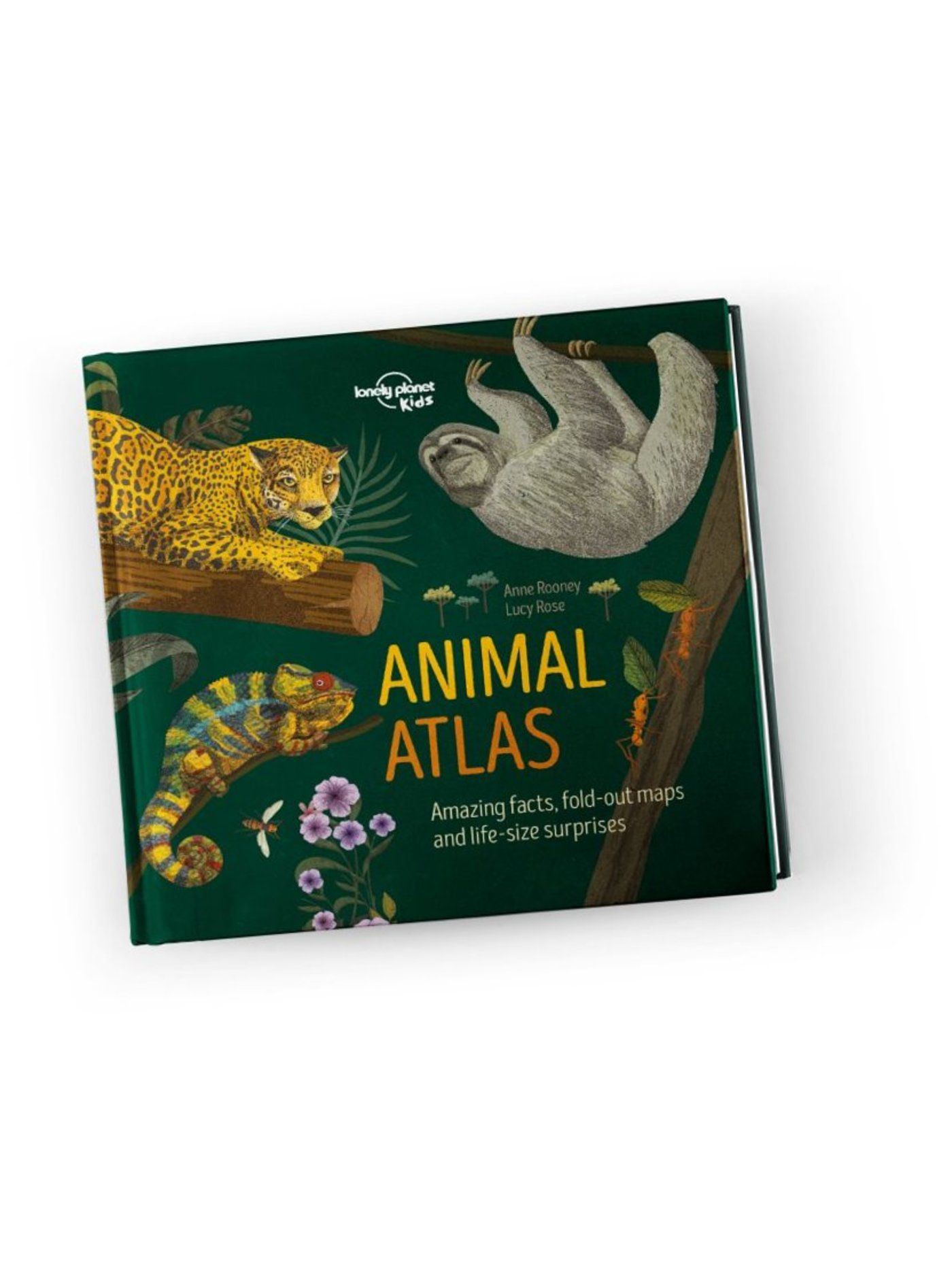Animal Atlas (North and South America edition)