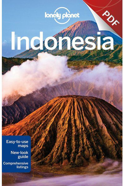 Indonesia 11 - Bali, Edition - 11 eBook by Lonely Planet