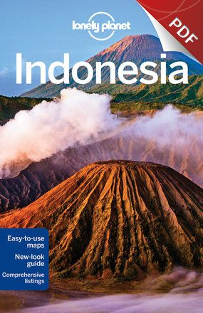 Indonesia - Understand Indonesia and Survival Guide (PDF Chapter)
