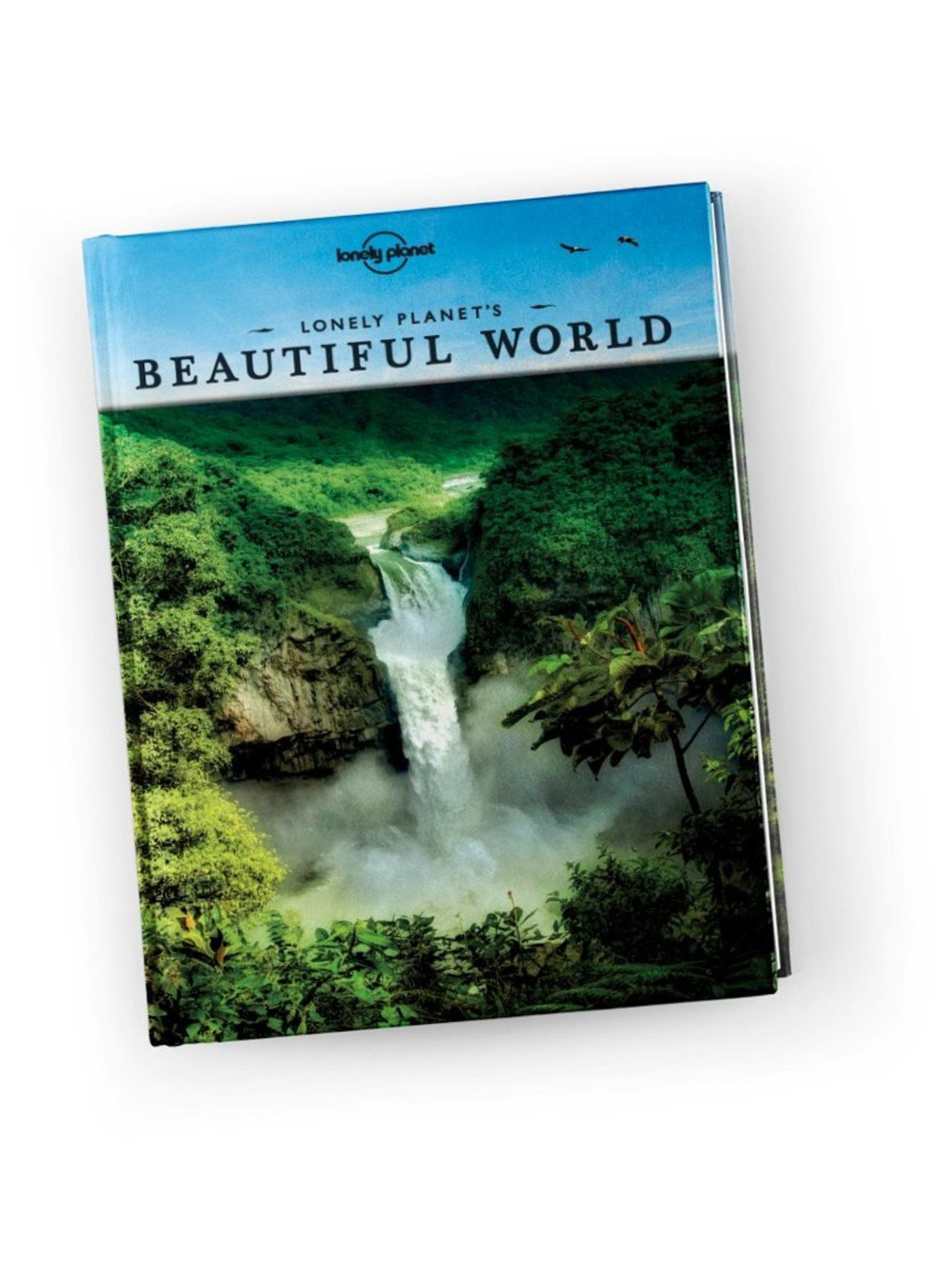 Lonely Planet Watching Wildlife Central America 1st Ed. 1st Edition