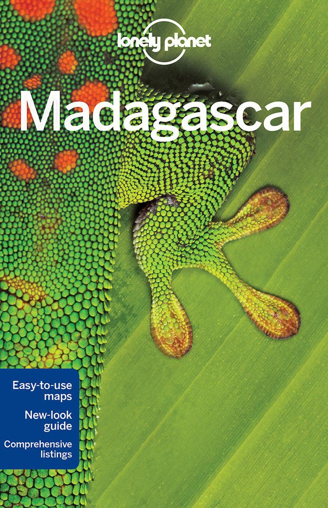 The Great Reef travel   Madagascar - Lonely Planet